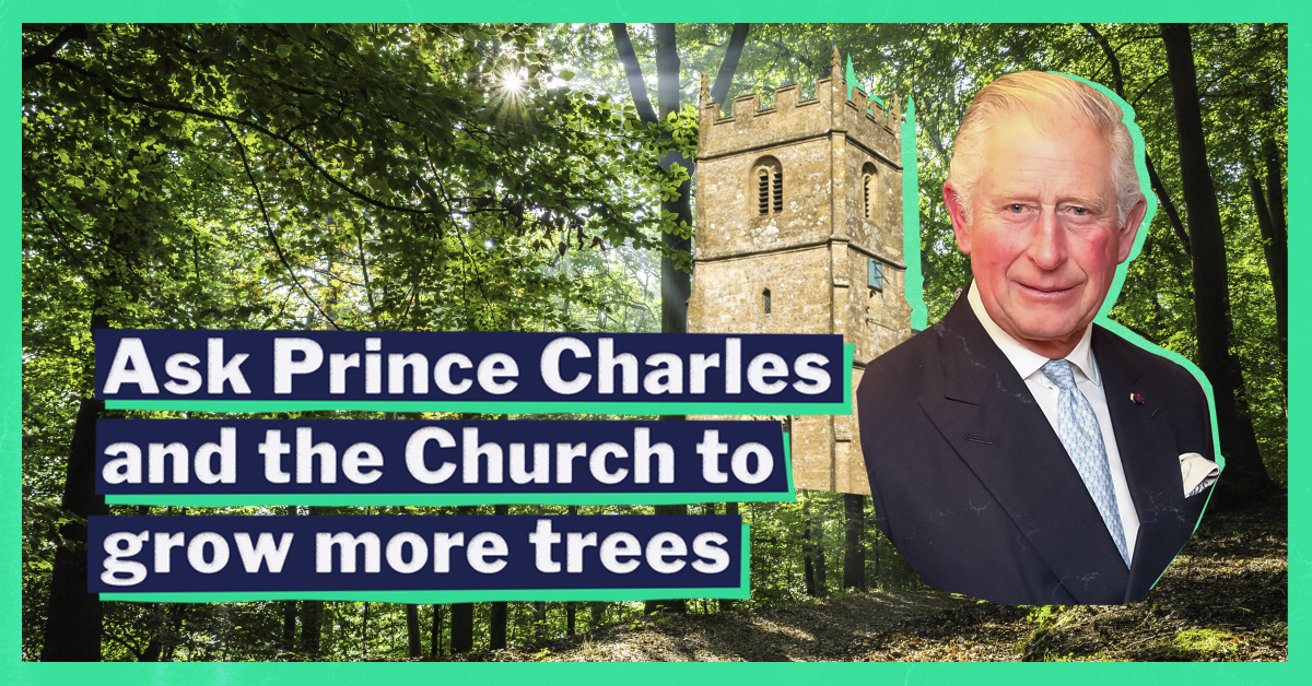 Ask Prince Charles and the Church to grow more trees