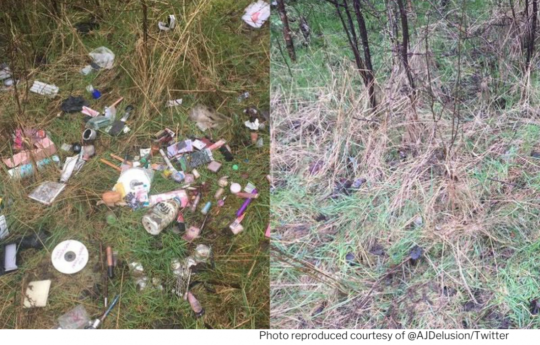 Picture a scene before and after litter has been removed